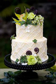 Gorgeous and simple 2 tiered round wedding cake. Great trellis floral piping design with unique floral adornments. Would look great with classic blooms or with pictured succulents. Would also have just as much of an impression on a classic pedestal as it does on this Swiss dotted black painted piece. www.facebook.com/LFFdesigns