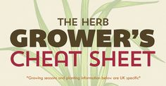 Always wanted to grow your own herbs? Now you can with the help of this Herb Growing cheat sheet.