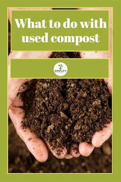 You can used compost as mulch because it has a number of benefits such as maintaining the moisture level of soil, gradually releasing nutrients to your plants. // Organic Gardening // Reuse Compost // Compost // #composttomulch #reusecompost #organic Organic Soil, Organic Gardening, Vegetable Garden Soil, Growing Carrots, Compost Tea, Top Soil, Clay Soil, Healthy Environment, Potting Soil