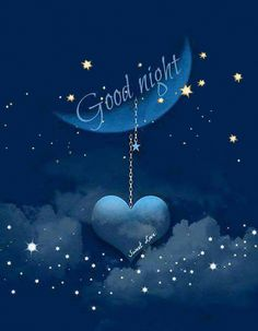 good night my Love... sleep well. I will be dreaming of you .
