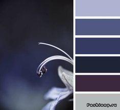 Blues to deep purples...gorgeous palette
