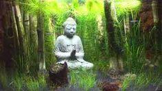 Image result for buddha aquariums