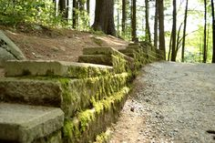 Moss Grows on the Rocks by wagn18.deviantart.com on @deviantART