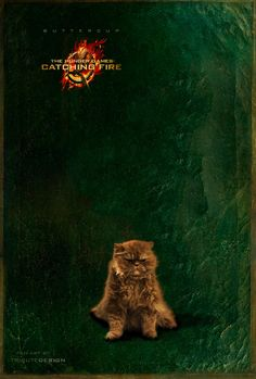 Catching Fire character poster pays tribute to the Hunger Games's unsung hero: Buttercup