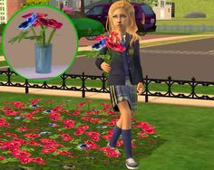 'Pick Flowers' Modification for The Sims 2 (TS2)
