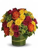 Order flowers online from a local flower shop in Sudbury, MA. The Frugal Flower offers fresh flowers, hand-delivered to homes and offices in Massachusetts. Get Well Flowers, Fall Flowers, Summer Flowers, Beautiful Flowers, Beautiful Bouquets, Summer Colors, Fresh Flowers, Colorful Flowers, Birthday Flower Delivery