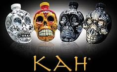 #KAH Tequila: The Day of the Dead Tequila. KAH® was designed to pay reverence and honor to #Mexico, its people and its traditions. Each bottle represents traditional Calaveras -  skulls made from sugar, which are used during the Day of the Dead celebrations. #tequila culture #tequila #Day of the Dead tequila #drinks #bar #parties