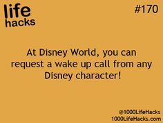 You mean all I have to do to be awakened by Prince Charming was go to Disney Land and request a wake up call!?... I now will use the excuse that I'm still single because mom and dad never took me to Disney Land as promised and so I've never had my opportunity to meet my Prince!