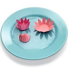 Water Lillies. Watch a paper flower magically bloom using capillary action, the same force that helps real-life flowers open.