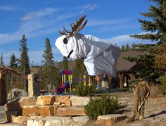 ghost moose, Winter Park, CO
