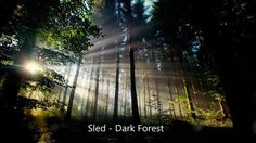 Mystical song with guitars, piano, with elements of dubstep and breaks the rhythm of the drums. Get the license here:  - http://audiojungle.net/item/dark-forest/9276201