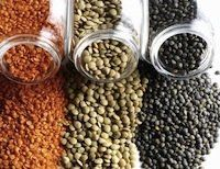 Lately lentils have become a tasty staple in my diet. Low in calories and high in nutrition, lentils are the perfect legume to eat in the summer in salads, spreads, for crudité and crackers, and as