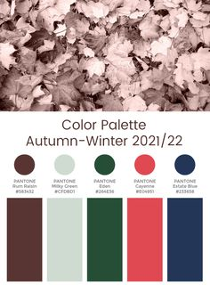 Potential colours for scarves