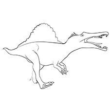 Spinosaurus Coloring Images Dinozaury