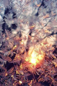 Winter Wallpaper - New Sites Iphone Wallpaper Winter, Cool Wallpaper, Cute Christmas Wallpaper, Holiday Wallpaper, Winter Photography, Amazing Photography, Nature Photography, Winter Sunset, Winter Scenery