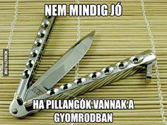 Funny Pictures, Jokes, Lol, Truths, Meme, Fanny Pics, Husky Jokes, Funny Pics, Memes