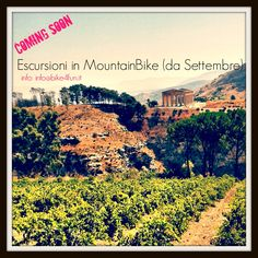 MountainBike around Sagesta