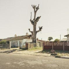 Dillon Marsh Photography - Limbo 06