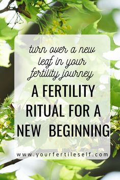 Here's a fertility ritual that can help you turn over a new leaf in your fertility journey – to approach your journey with hope and confidence. Fertility Foods, Natural Fertility, Fertility Spells, Boost Fertility, Intuition, Feeling Down, How Are You Feeling, Infertility Counseling, Anti Oxidant Foods