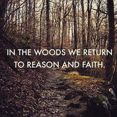 Who wants to go hiking? Woods may look different, but hiking through it and hearing only the sounds of nature is the same. Find serenity through physical activity and far away from civilization. Emerson had such a beautiful thought process. Phrase Cute, Nature Quotes Adventure, Walk In The Woods, All Nature, Green Nature, John Muir, Beach Photography, Travel Quotes, Wanderlust Quotes