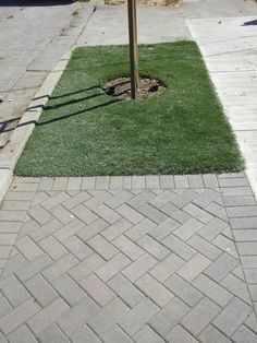 This sidewalk project was installed by Solis Landscape and Construction using Pacific Interlock Pavingstone's Holland B6 (gray/charcoal) in a 45 degree herringbone design with a soldier border.