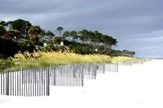Palmetto Dunes Beach, Hilton Head Island......we used to stay here when I was a teenager.