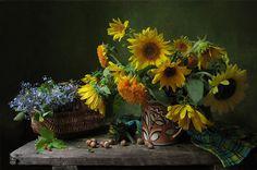 Güneşin altında ayçiçekleri