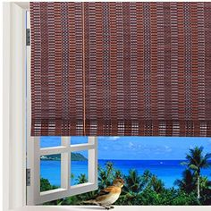 Natural Bamboo Roll Up Window Blind Roman Sun Shade WB-48N1 (W48 X H84)