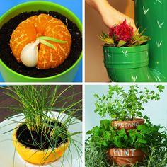 Diy Herb Garden, Home Vegetable Garden, House Plants Decor, Plant Decor, Growing Plants, Growing Vegetables, Container Gardening, Gardening Tips, Gemüseanbau In Kübeln