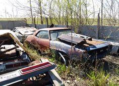 69 Camaro Used Car Lots, Rust Never Sleeps, Car Barn, Rusty Cars, Abandoned Cars, Sweet Cars, Barn Finds, General Motors, Chevrolet Camaro