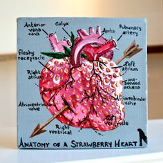 A strawberry heart. Such a unique idea! Love it. Anatomy of the Strawberry Heart by Amber by willabirdbyamber, $55.00