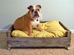 Cama de pallet para seu cãozinho