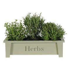 Window Box Herbs Indoor planter