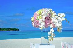 Wedding Tips and Tricks. All brides imagine having the ideal wedding day, however for this they require the perfect bridal dress, with the bridesmaid's dresses complimenting the brides-to-be dress. These are a few suggestions on wedding dresses. Elegant Wedding, Wedding Bride, Perfect Wedding, Wedding Events, Wedding Ceremony, Dream Wedding, Wedding Dresses, Wedding Locations, Bride Dresses