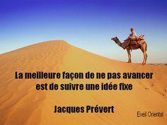 Le meilleur moyen de ne pas avancer est de suivre une idée fixe – Jacques Prévert -