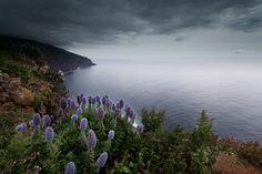 Ponta do Pargo - Madeira - Portugal