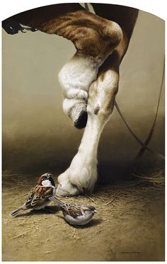 "Hyper-realistic painting by Canadian artist Michael Dumas - this one titled ""Trust  Horse & Sparrows"""