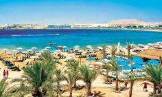 Holidays in #Egypt - Red Sea
