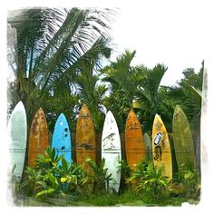 surfboard fence in Haiku Maui