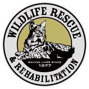 Wildlife rescue Intern