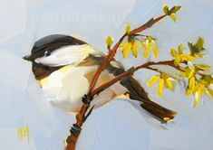 chickadee and forsythia branch no. 4 | angela moulton's painting a day
