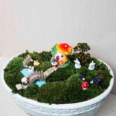 56 Best Terrarium Garden Miniature Images In 2019 Terrariums