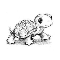 Sea turtle drawing Box turtle drawing Cartoon turtle drawing Cute turtle drawings There are a numerous amount of pe. Cartoon Drawings, Drawing Sketches, Drawing Ideas, Owl Drawings, Cute Turtle Drawings, Sketching, Easy Turtle Drawing, Cute Drawings Of Animals, Cute Owl Drawing