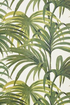 House of Hackney Palmeral wallpaper in White & Green. This is an Art Deco inspired palm print wallpaper taking inspiration from Palm Springs. This botanical palm print wallpaper comes in four other colours. Buy online now we ship wallpaper worldwide. Wallpaper Off White, Luxury Wallpaper, Print Wallpaper, Pattern Wallpaper, Green Wallpaper, Leaves Wallpaper, Wallpaper Backgrounds, Eclectic Wallpaper, Office Wallpaper