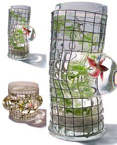 Decorative Fish Tanks 2009 - Cool Fish Home Aquarium - HomeHouseDesign. Aquarium Design, Glass Aquarium, Saltwater Aquarium, Aquarium Fish Tank, Aquarium Ideas, Ocean Aquarium, Aquariums Réservoir, Amazing Aquariums, Unique Fish Tanks