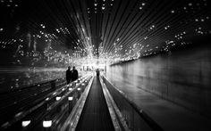 To the light by Daniel Sackheim
