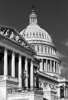 """""""Nation Capitol B+W"""" This is a copyrighted photo. If you wish to purchase this photo or any other of my fine art prints, please visit my website at; http://jerryfornarotto.artistwebsites.com/  Watermark will be removed from all prints purchased."""