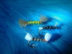 Tying the Shipmans Buzzers with Davie McPhail. - YouTube