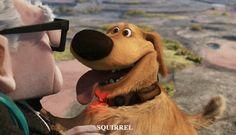 Dug es una mezcla entre Golden Retriever y Labrador. | Y es el único perro de Muntz que no tiene el nombre de una letra griega.