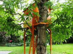 Rhea - the tree house One Tree, Play Houses, Arch, Outdoor Structures, Building, Interior, Garden, Design, Longbow